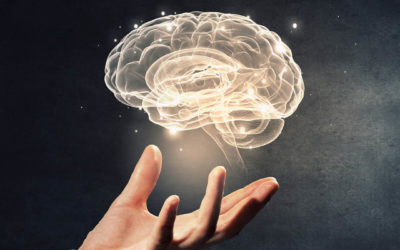Exploring Mind and Consciousness in the workplace