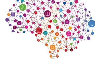 Elements of neuroscience in organizational transformation