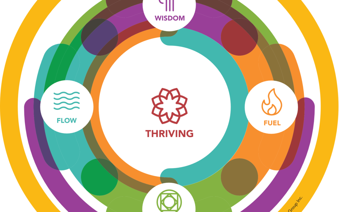 Learning nuggets from complex system transformation work (No. 2) – on holistic well-being